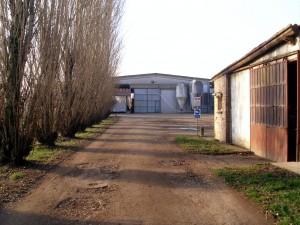 Azienda Agricola Loghino Sasso di Davide Lorenzi