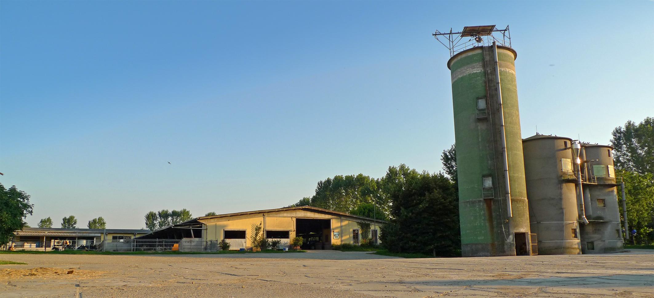 Allevamento Frisia - Bertonico, Lodi