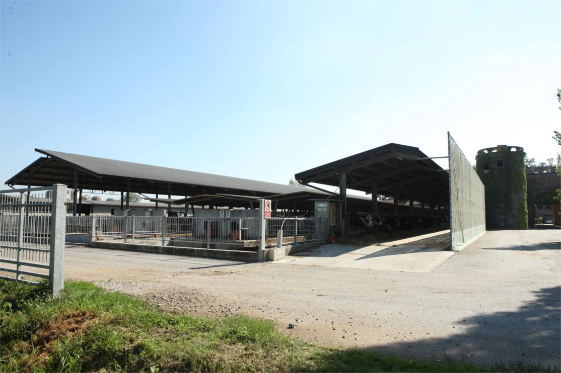 Azienda Agricola Guarneri