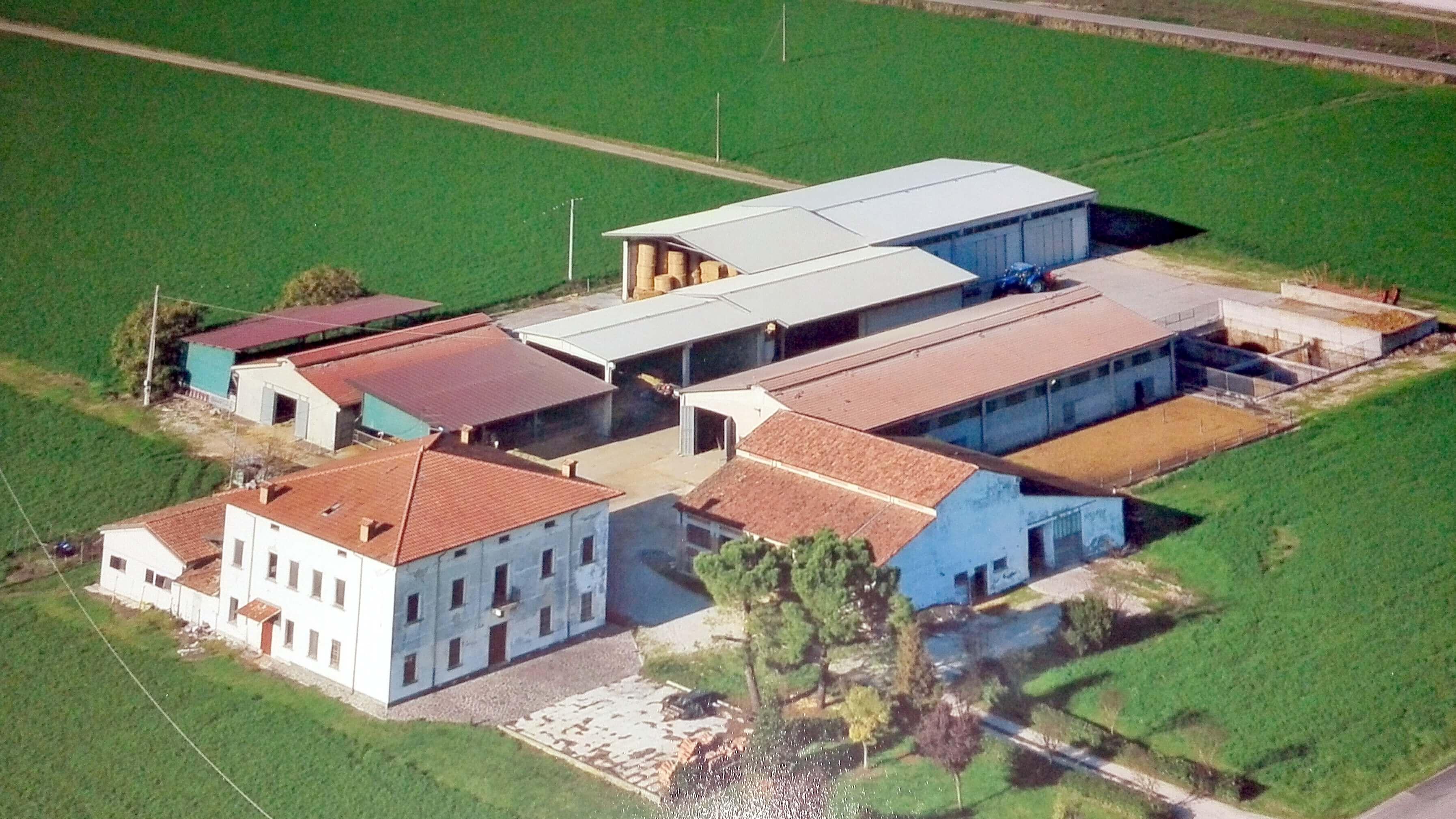 Azienda Agricola Soc. Agr. Luppi S.S.