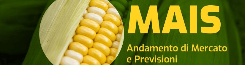 Stati Uniti: minore utilizzo di Mais nella produzione di etanolo