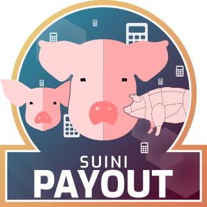 Payout Suini
